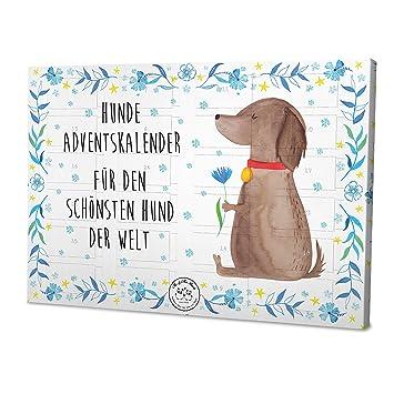 Weihnachtskalender Hund.Mr Mrs Panda Weihnachtskalender Haustiere Hunde Adventskalender Hund Blume Weihnachtszeit Mit Spruch Farbe