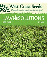 Lawn Solutions - Bee Turf