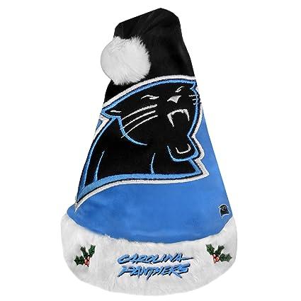 Amazon.com   Carolina Panthers 2011 Colorblock Santa Hat   Sports ... 4ede043f7