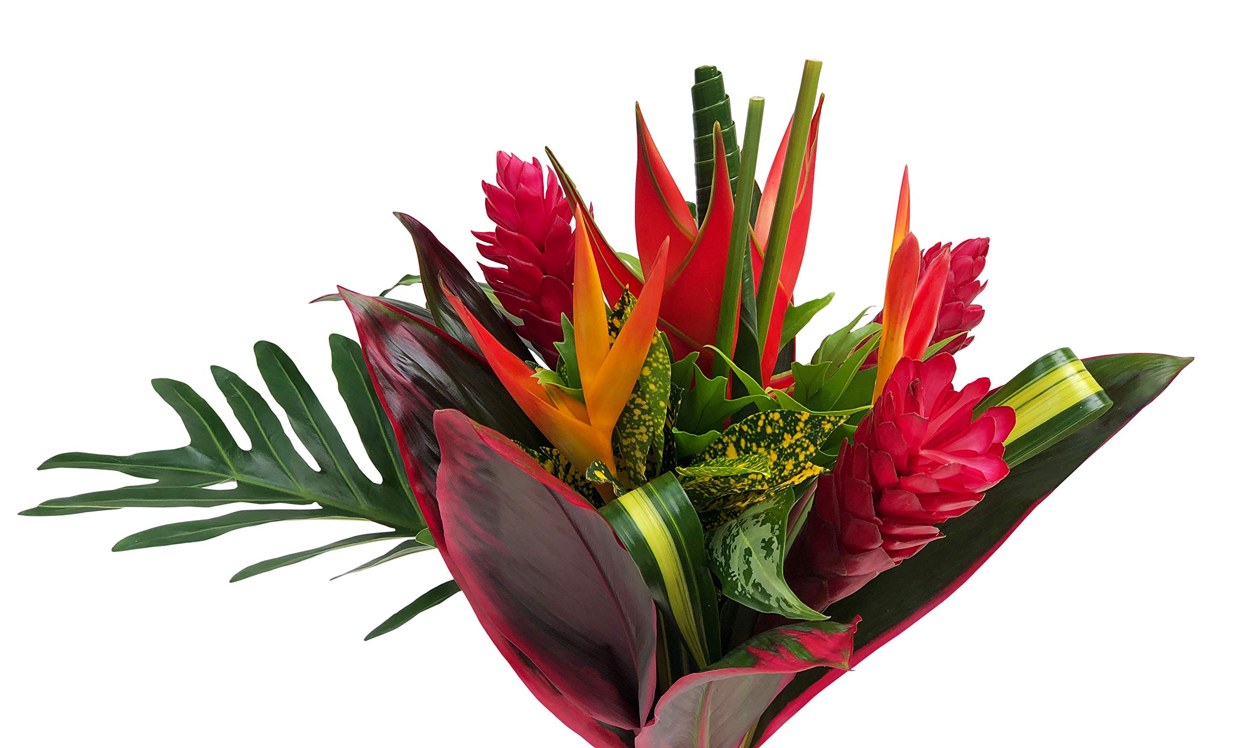 Tropical Bouquet Tropical Treasure with Bright Birds of Paradise, Pink Ginger, and Bold Tropical Greenery by BloomsyBox (Image #5)