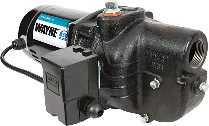 Wayne SWS75, 56914-WYN2, 3/4 HP Shallow Well Jet Pump, Black