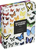 Encyclopedia of Rainbows Notes: 20 Different Notecards & Envelopes (Rainbow Cards, Colorful Blank Stationery)