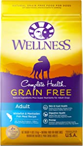 Wellness Natural Pet Food Complete Health Natural Grain Free Dry Dog Food, Whitefish, 4-Pound Bag