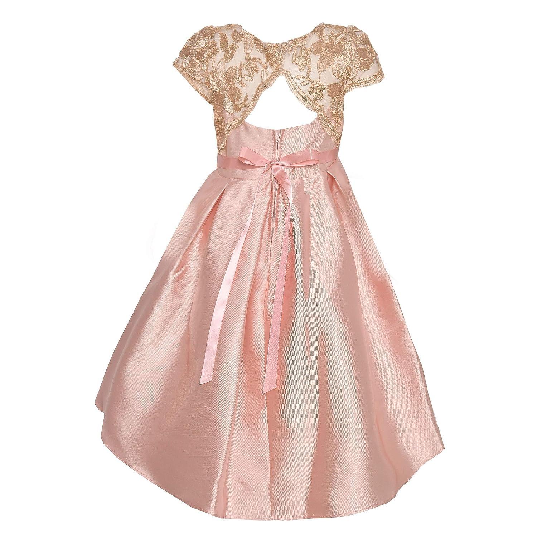 1577fe3c0f Amazon.com  Rare Editions Little Girls Blush Lace Panel Stone Trim Hi-Low  Dress 4-6X  Clothing