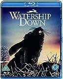 Watership Down [Edizione: Regno Unito] [Edizione: Regno Unito]