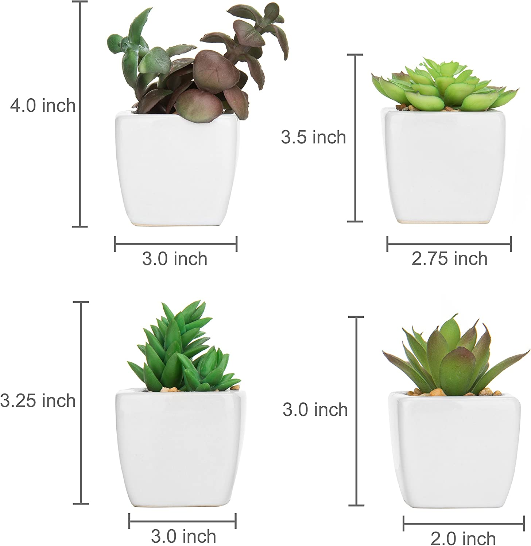 Alfareros Damian Canovas Conjunto DE Cinco MACETAS PEQUE/ÑAS para Cactus O Planta PEQUE/ÑA