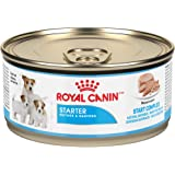 Royal Canin Size Health Nutrition Starter Mother and Babydog Mousse in Sauce Canned Dog Food, 5.8 oz Can (Case of 24)