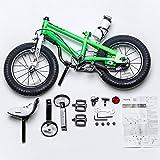 Royalbaby RB14B-6G BMX Freestyle Kids Bike, Boy's
