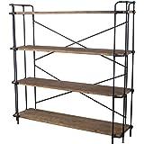 Great Deal Furniture Denise Austin Home Mercia 4-Shelf Bookcase