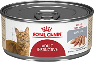 Royal Canin Feline Health Nutrition Adult Instinctive Loaf in Sauce Canned Cat Food, 5.8 Ounce Can (Pack of 24) (41025)