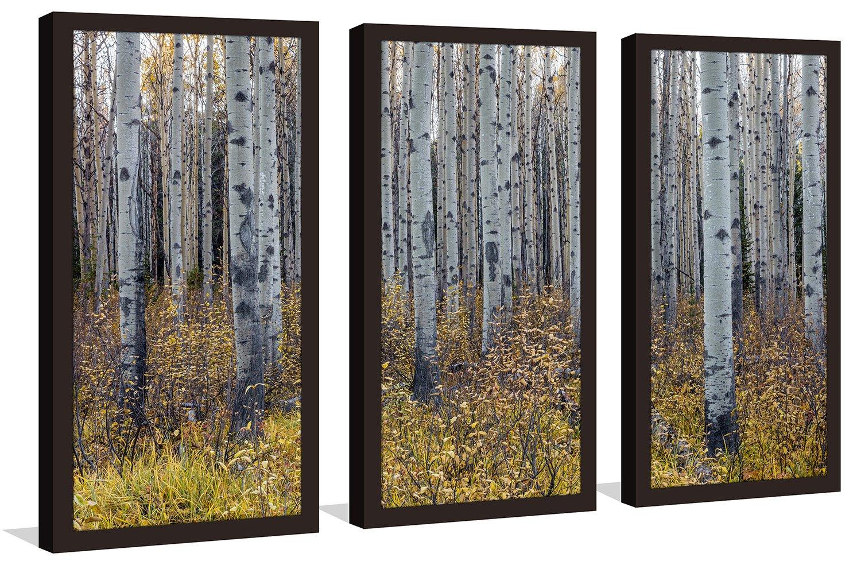 Picture Perfect InternationalBirch Framed Plexiglass Wall Art Set of 3