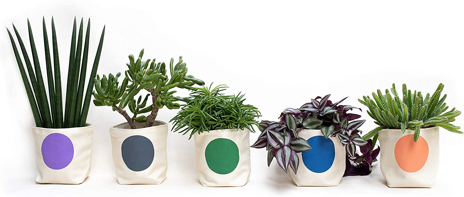 Ravello Handmade Canvas 4 inch Planter for Indoor Plants, Herbs and Succulents with Saucer Pack of 5 – All Colors