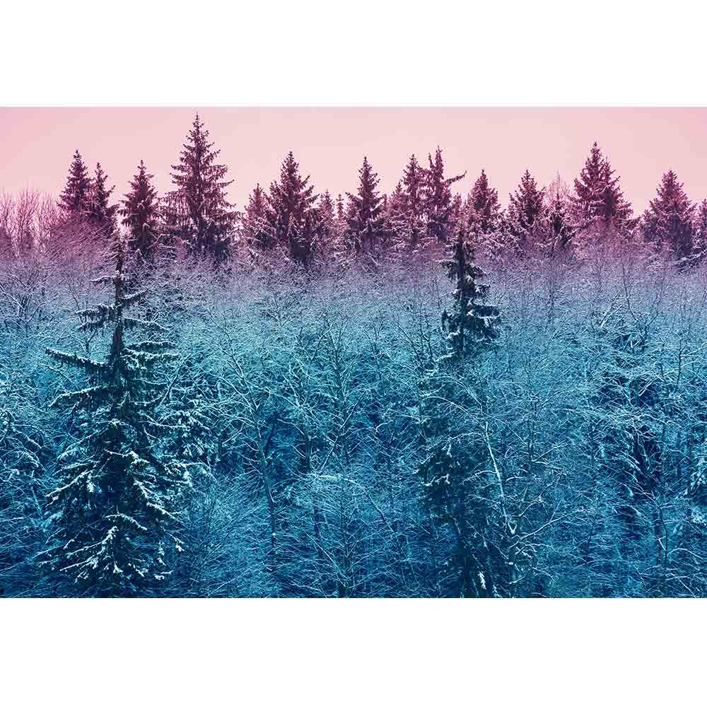wall26 - Fir Forest in Early Morning - Removable Wall Mural | Self-Adhesive Large Wallpaper - 100x144 inches by wall26 (Image #2)