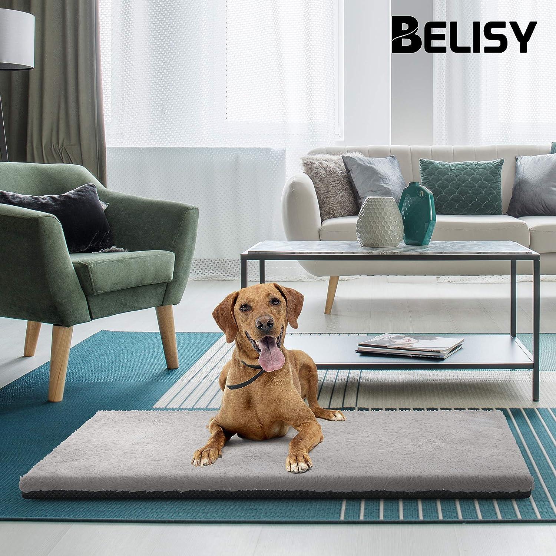 Tappetino per cani BELISY Happy - coperta coperta coperta per cani antiscivolo - fodera lavabile 27ad5a