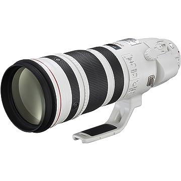 EF 200-400mm f/4L IS