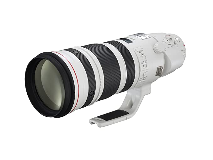 Review Canon EF 200-400mm f/4L