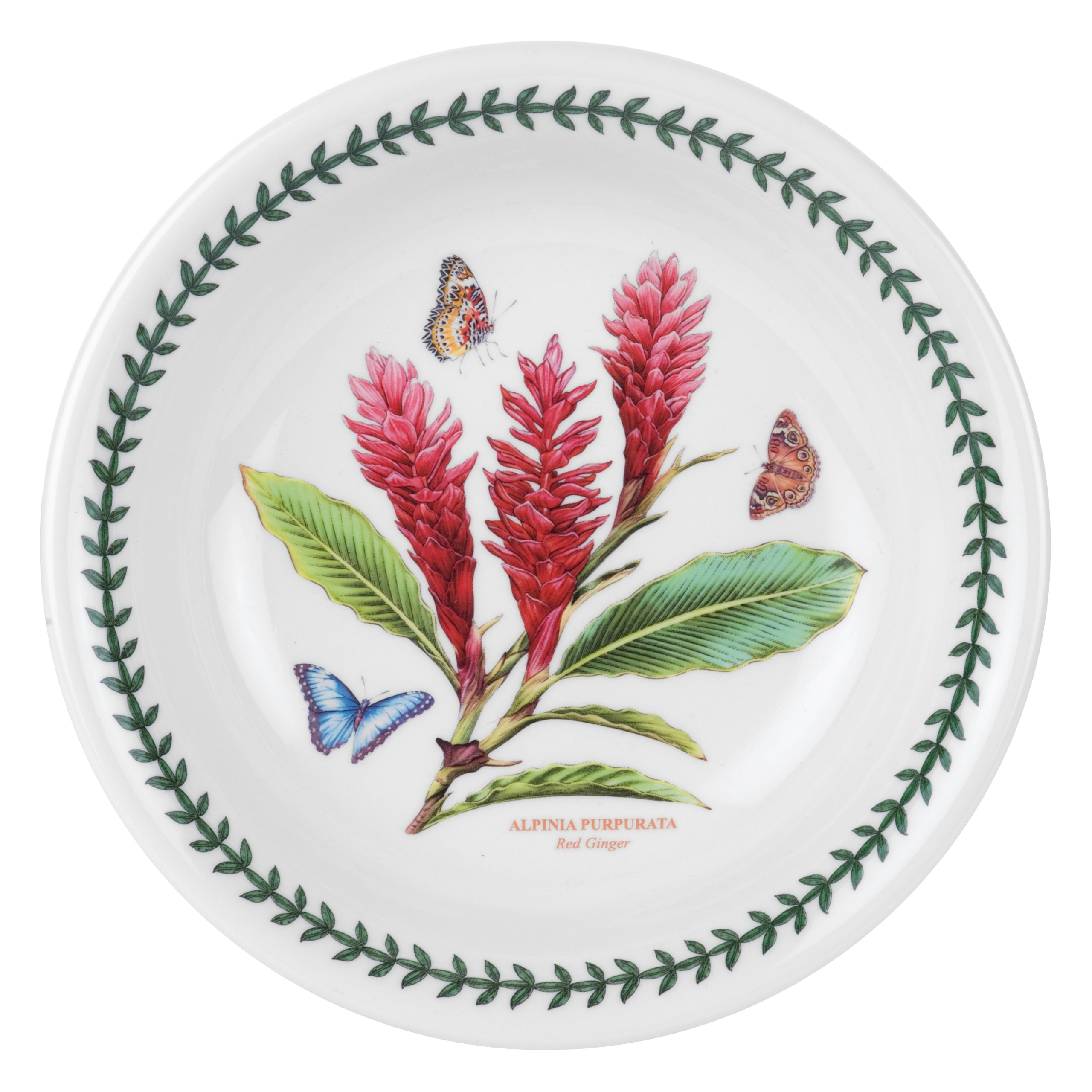 Portmeirion Exotic Botanic Garden Pasta Bowl, Set with 6 Assorted Motifs by Portmeirion