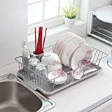 Basicwise Stainless Steel Dish Rack with Plastic Drain board, Gray
