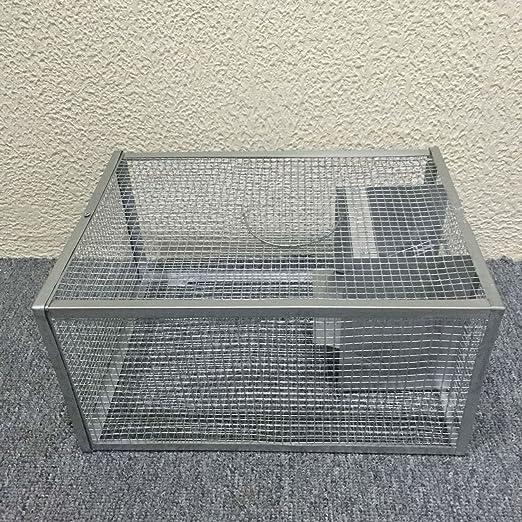 seicosy Live ratón trampa - 128.86 pulgadas jaula, jaula de hierro ...