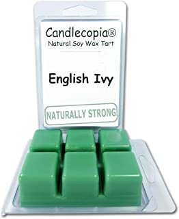 product image for Candlecopia Strongly Scented Hand Poured Vegan Wax Melts, 12 Scented Wax Cubes, 6.4 Ounces in 2 x 6-Packs (English Ivy)