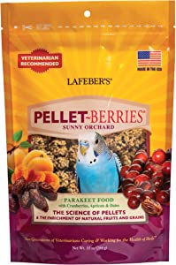 LAFEBER'S Pellet-Berries Pet Bird Food, Made with Non-GMO and Human-Grade Ingredients