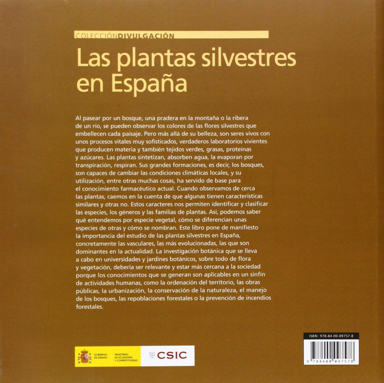 Las plantas silvestres en España (Divulgación): Amazon.es: Morales Valverde (coord.), Ramón: Libros