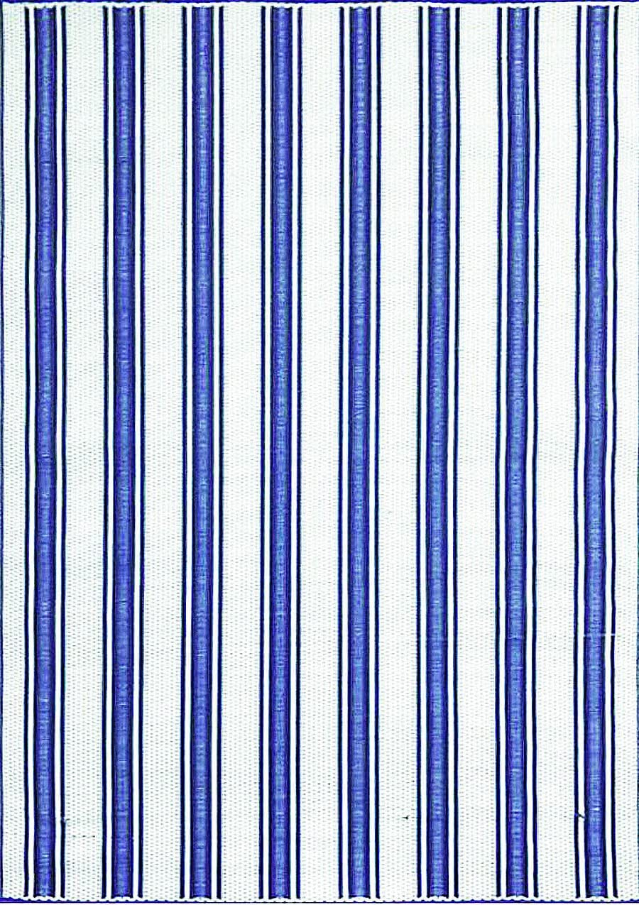 Mad Mats FM-VST58-BW1 Vertical Stripe-Outdoor Indoor Plastic mat, 5 X 8, Blue and White