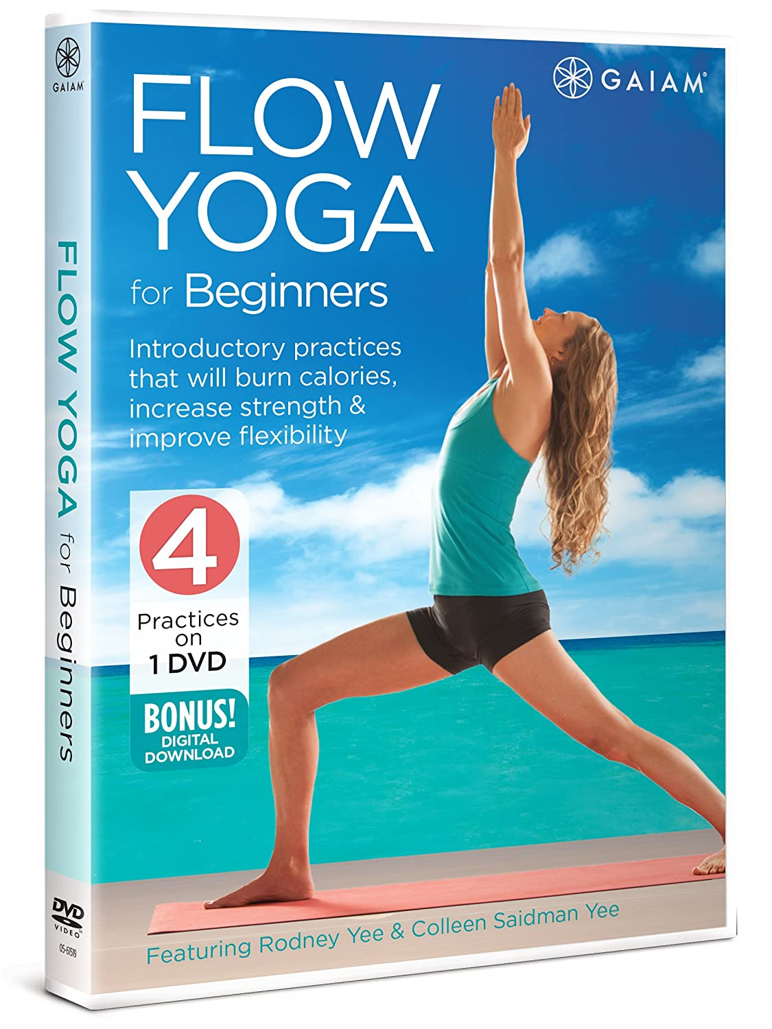 Flow Yoga For Beginners Edizione: Stati Uniti Italia DVD ...