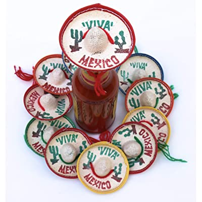 One Dozen Pk Mexico Party Favors - Tiny Sombrero Hats Mini for bottles Mexican decorations Viva hat mexicanos for Fiesta Straw decoraciones-cupcake toppers Cinco de Mayo Supplies: Toys & Games