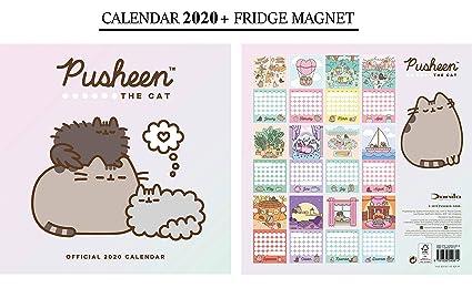 Pusheen Calendario Oficial 2020 + Imanes de nevera Pusheen: Amazon ...