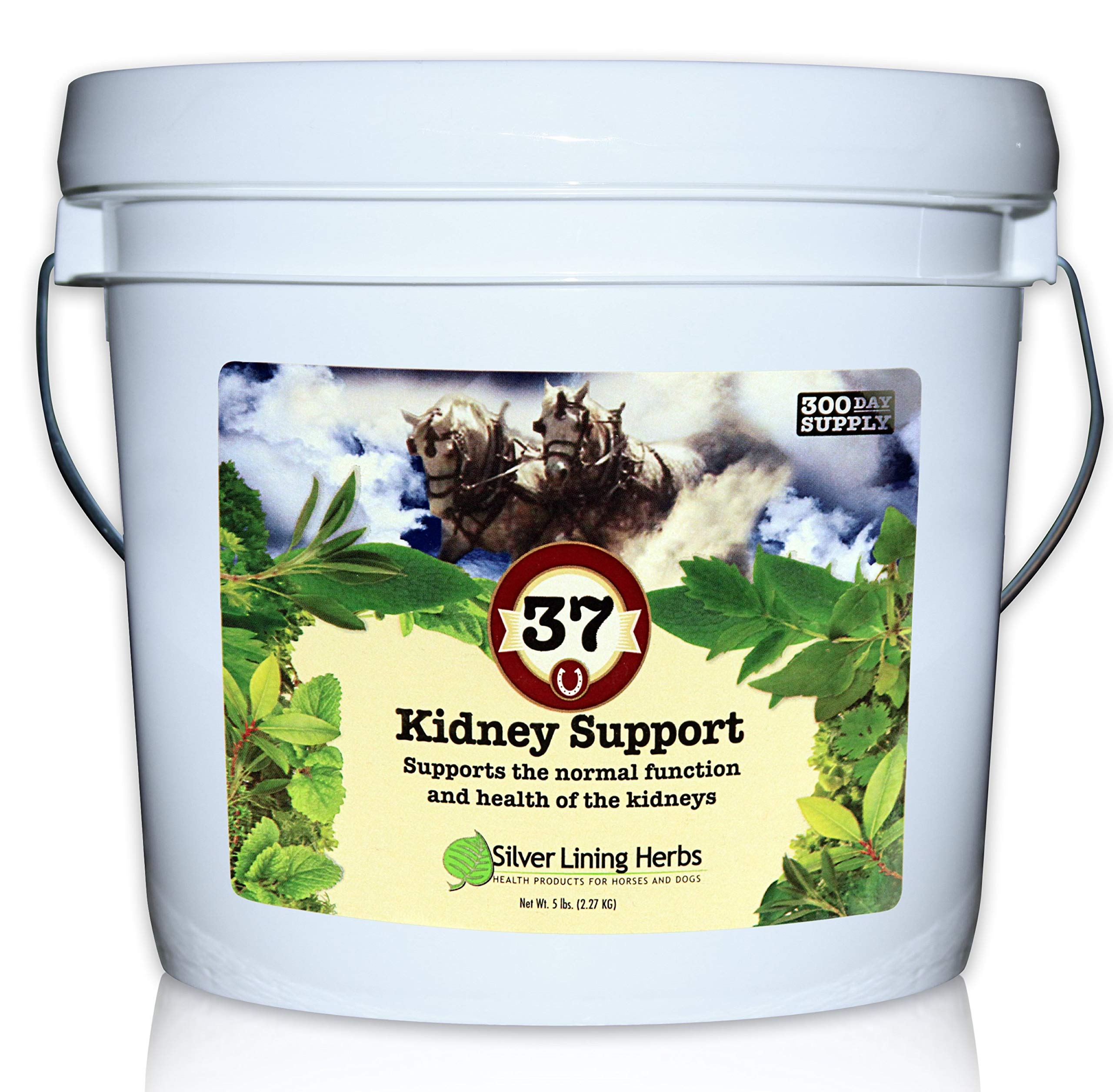 Silver Lining Herbs 37 Kidney Support for Horses| Natural Herbs Support Normal Equine Kidney, Urinary Tract and Bladder Function | 5 Pound Bucket | Made in USA