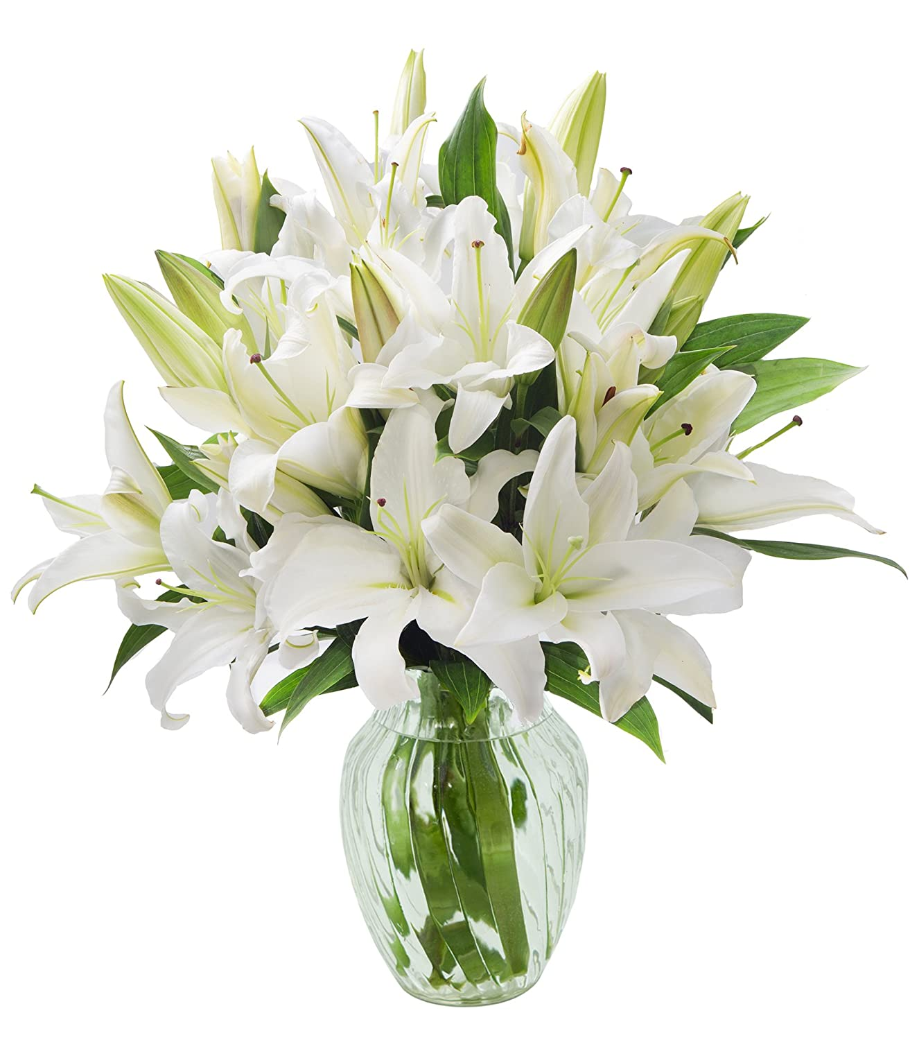 Amazon kabloom pure love white lily bouquet of 10 white lilies amazon kabloom pure love white lily bouquet of 10 white lilies with vase grocery gourmet food izmirmasajfo