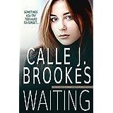 Waiting (PAVAD: FBI Romantic Suspense Book 2)