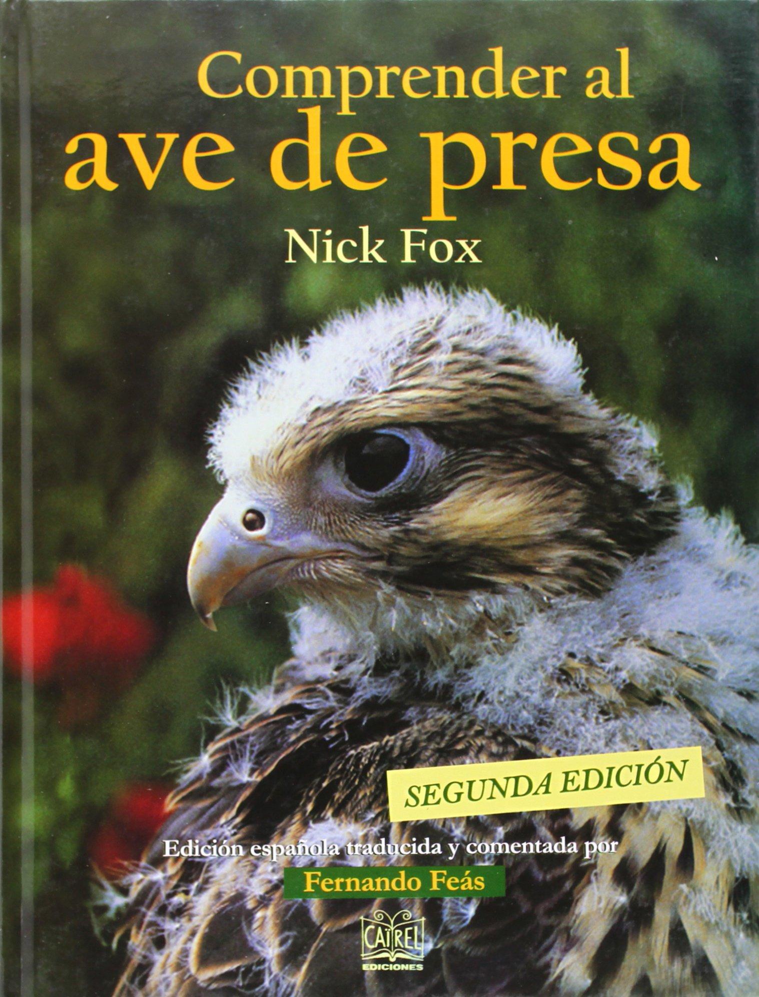 Comprender al ave de presa: Amazon.es: Fox, Nick: Libros