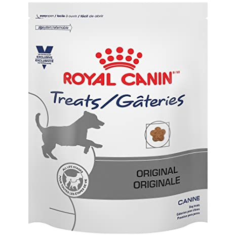 Amazoncom Royal Canin Dog Treats 176 Oz Pet Snack Treats Pet
