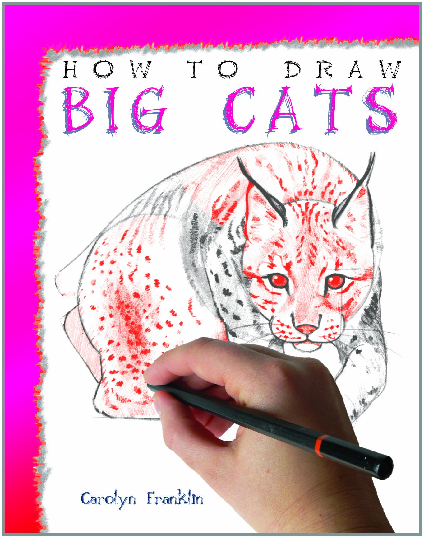 How to Draw Big Cats ebook