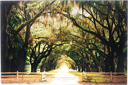 Dicksons Praise His Name Psalm 100:4 Spanish Moss 30 x 20 Wood Decorative Wall Plaque