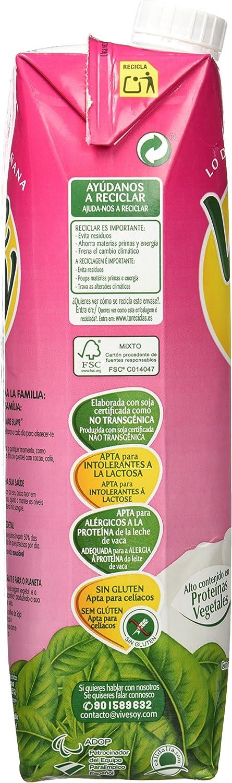 Pascual Vivesoy Bebida De Soja - 1 l: Amazon.es: Amazon Pantry