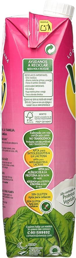 Pascual Vivesoy Bebida De Soja - 1 l: Amazon.es: Alimentación ...