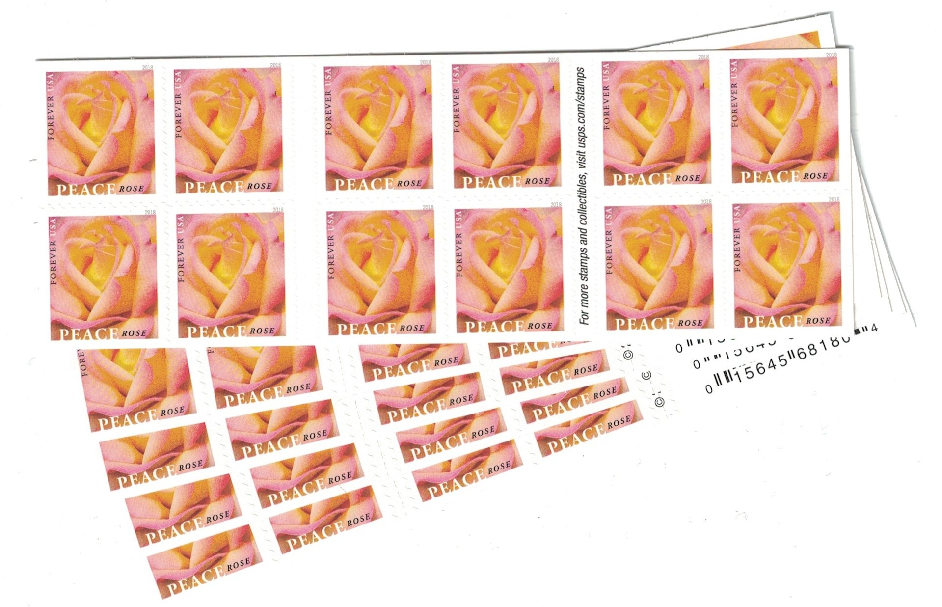 Peace Rose USPS Forever Stamp (5 Booklets (100 Stamps))