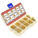 Ceramic Capacitor Assortment Kit - Set of 600 Small