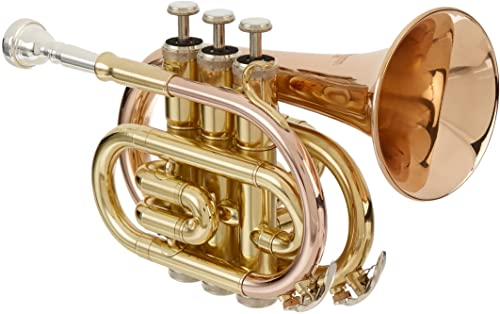 Roy Benson RBPT101G Bb Pocket Trumpet