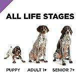 Purina Pro Plan Dry Dog Food; SPORT Active 26/16