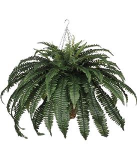 Amazon wholesale boston fern wurn silk plant decor silk house of silk flowers artificial fern in beehive hanging basket mightylinksfo
