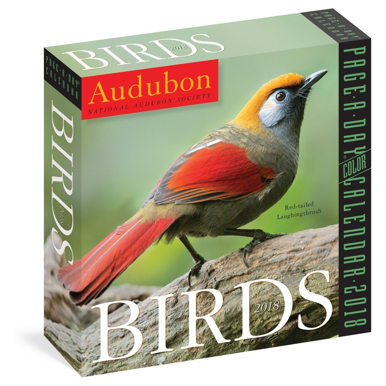 Audubon Birds Color Page-A-Day Calendar 2019