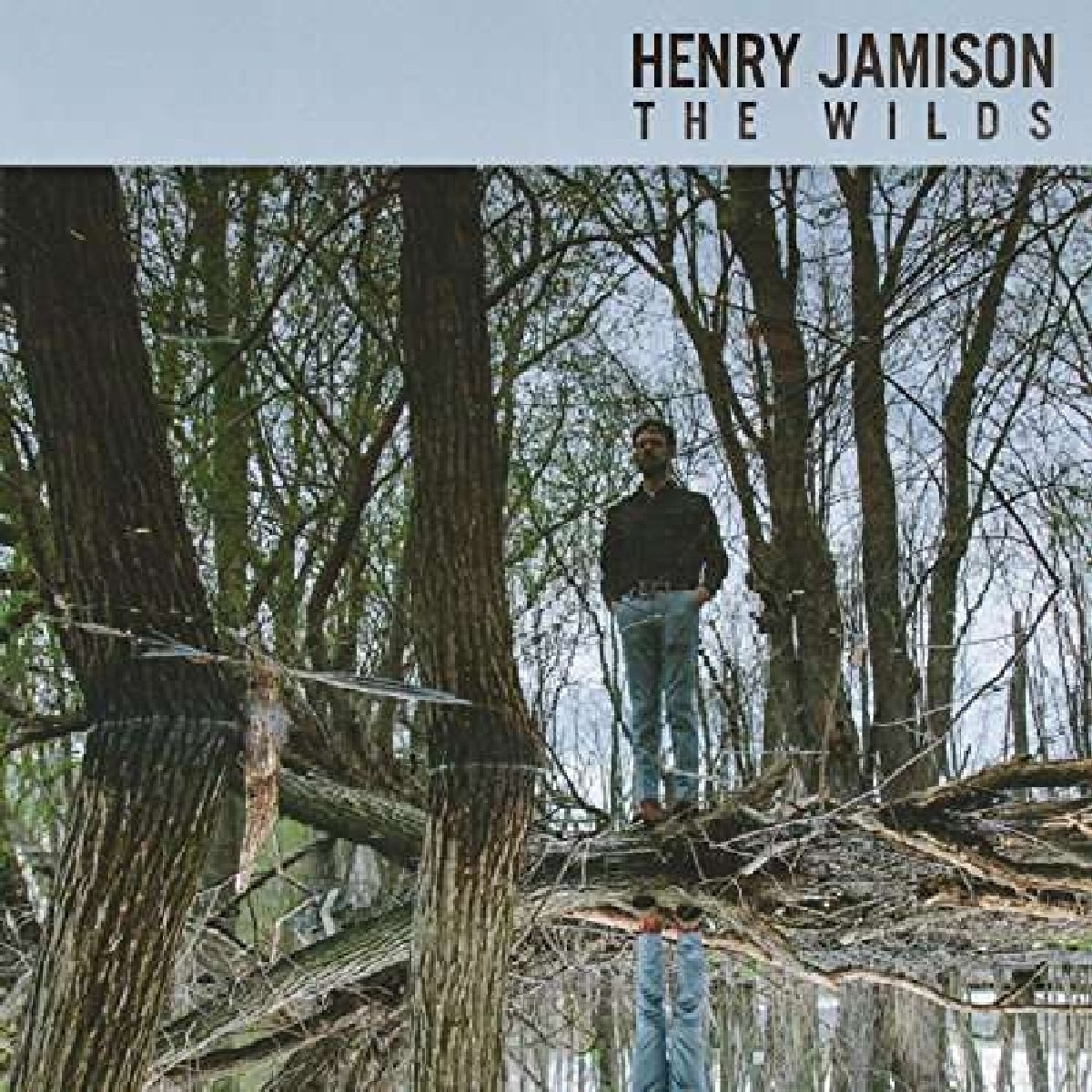 Henry Jamison - Wilds (CD)