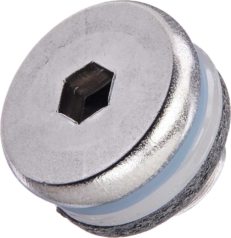 18-4255 Sierra International E-Tec Drain Screw