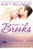 Bidding on Brooks: The Winslow Brothers #1 (The Blueberry Lane Series -The Winslow Brothers) (English Edition)