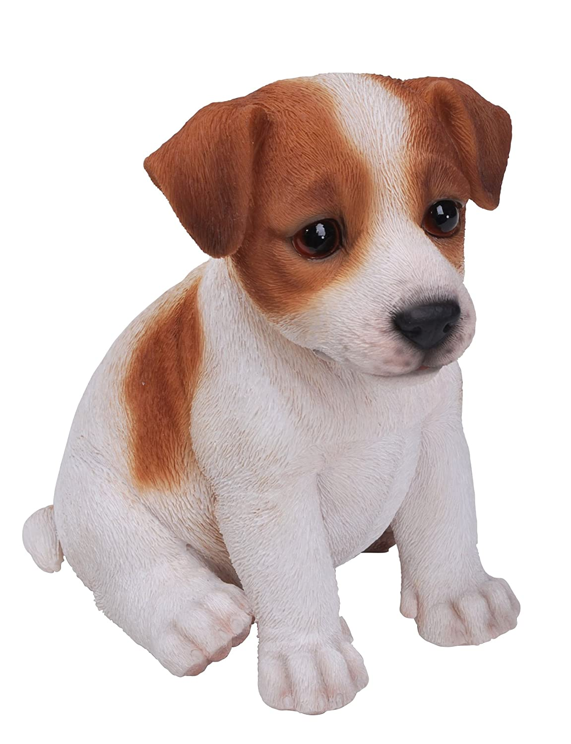 jack russell puppy pet pal by vivid arts amazon co uk garden