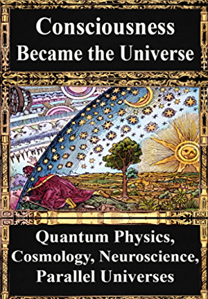 How Consciousness Became the Universe:: Quantum Physics; Cosmology; Relativity; Evolution; Neuroscience; Parallel Universes